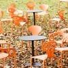 Moroso - Supernatural Set 2 Stühle + 1 Tisch
