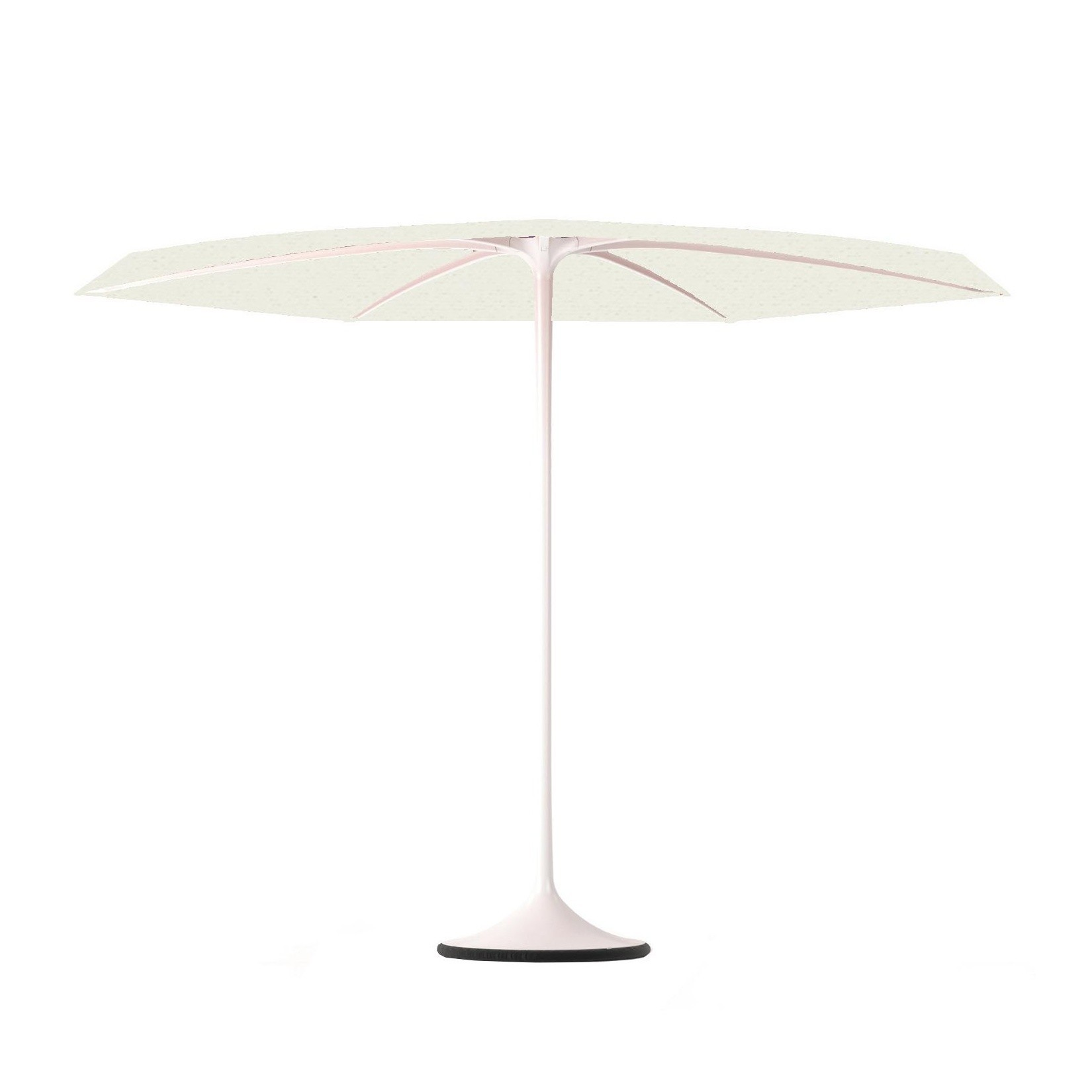 Royal Botania Palma Sonnenschirm Mit Fuss O 300cm Ambientedirect