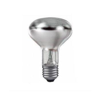 QualityLight - AGL E27 SPOT 100W - metallen