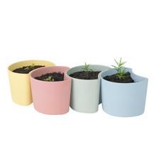 RIG-TIG - Your Tree Pflanzentopf mit Samen