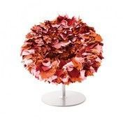 Moroso - Bouquet Sessel - rosa/altrosa/orange
