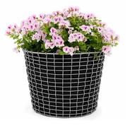 Korbo - Aktionsset Korbo Bin + Plantingbag gratis