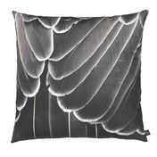 by nord - by nord Samtkissen mit Motiv 60x60cm - Printed Feather Brown Pattern