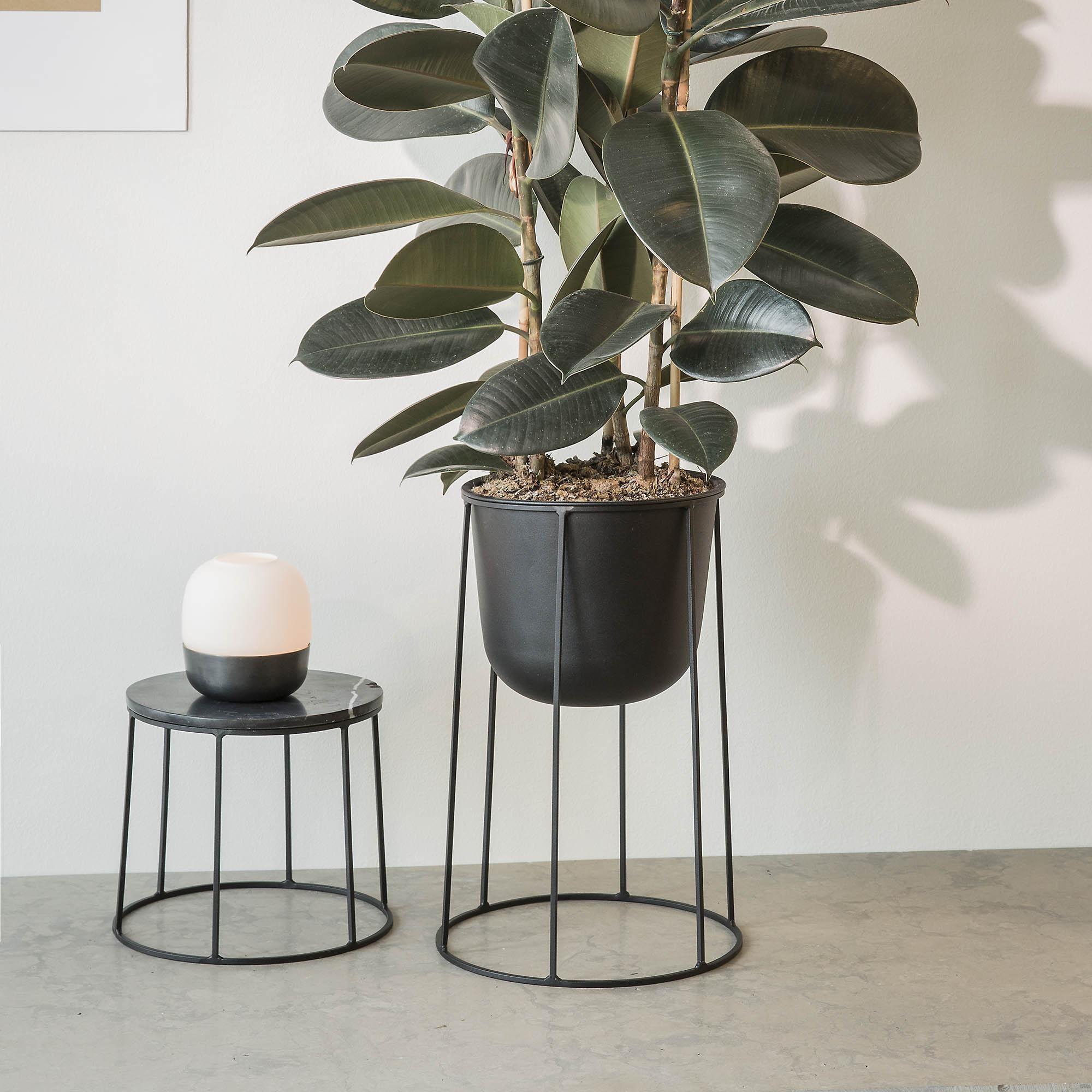 menu wire pot pot fleurs avec cadre ambientedirect. Black Bedroom Furniture Sets. Home Design Ideas