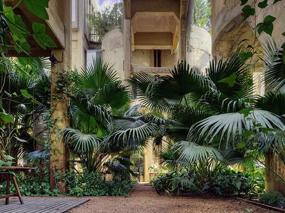 Gebäude mit Palmen