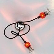 Serien: Brands - Serien - Poppy 2  Wall Lamp / Ceiling Lamp