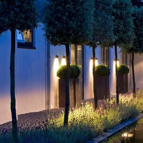 Royal Botania - Beamy Wall Wandleuchte