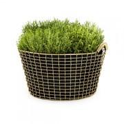 Korbo - Spécial-Korbo Classic 35+3 Sacs à plantes gratuite