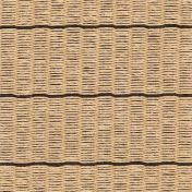 Woodnotes: Brands - Woodnotes - Line Paper Carpet