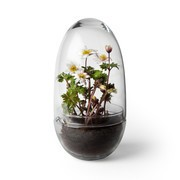 Design House Stockholm - Grow Mini Greenhouse H 24cm