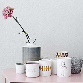Mehrere Vasen mit einer Blume