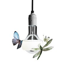 Ingo Maurer - Johnny B. Butterfly Suspension lamp