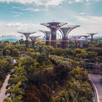 Singapore Kachel1