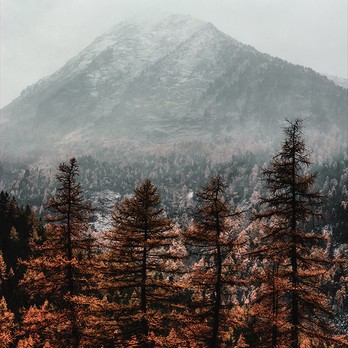 1 Herbst Kachel