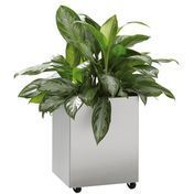Jan Kurtz: Brands - Jan Kurtz - Planter Vase With Wheels Rectangular