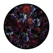 Moooi Carpets - Fool's Paradise Teppich Ø350cm