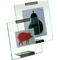 Danese - Galapagos Picture Frame