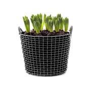 Korbo - Aktionsset Korbo Classic 24 +3 Plantingbags gratis