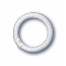 QualityLight - FLUO G10q RING 32W
