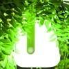 Fermob - Balad mobile LED Leuchte mit Akku