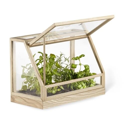 DesignHouseStockholm - Greenhouse Mini Gewächshaus