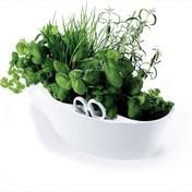 Royal VKB: Hersteller - Royal VKB - Herb Garden Kräuterschale