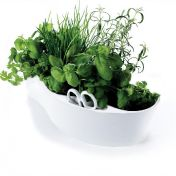 Royal VKB: Marcas - Royal VKB - Herb Garden - Capa
