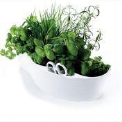 Royal VKB - Herb Garden Kräuterschale