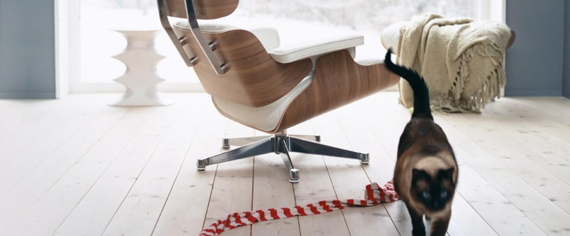 Vitra Eames Lounge Chair mit Katze
