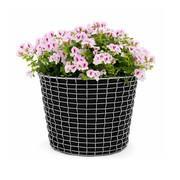 Korbo - Actieset Korbo Bin 16 + 3 Plantenzakken gratis