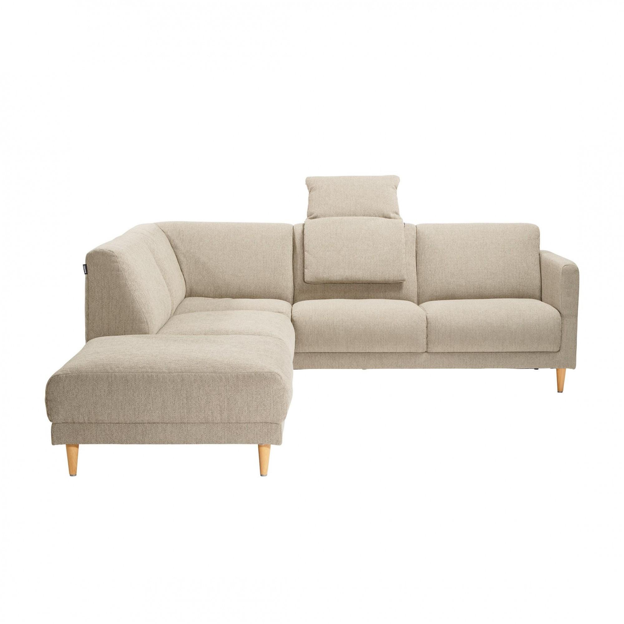freistil rolf benz freistil 141 loungesofa 225x258cm. Black Bedroom Furniture Sets. Home Design Ideas