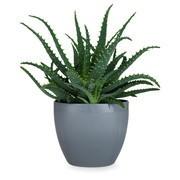 Rosendahl Design - Pot de fleurs Grand Cru Ø14cm