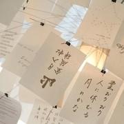 Ingo Maurer - Zettel'z 5 DIN A5 80 Extra Sheets Mixed