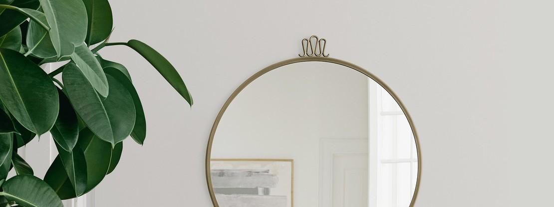Spiegel und Pflanze